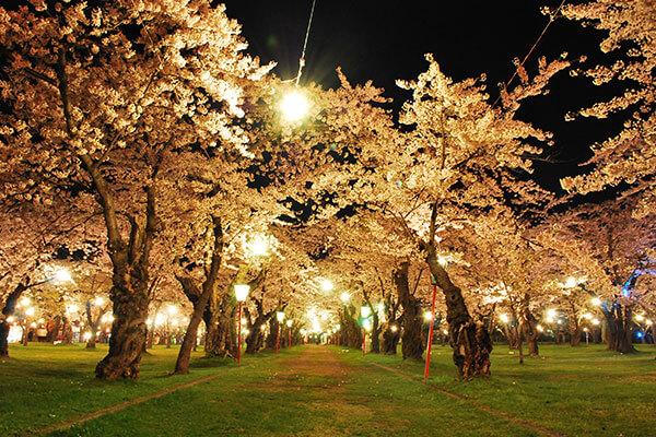 Aobagaoka-koen Park